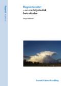 Regnintensitet – en molnfysikalisk betraktelse