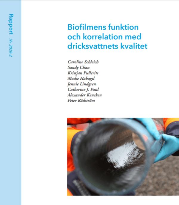 Biofilmens funktion och korrelation med dricksvattnets kvalitet