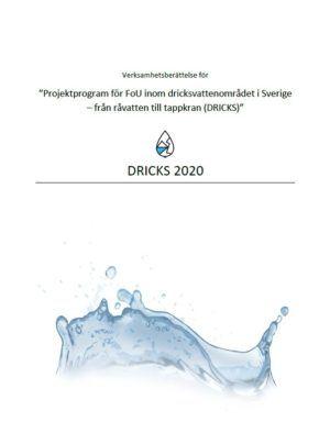 DRICKS 2020