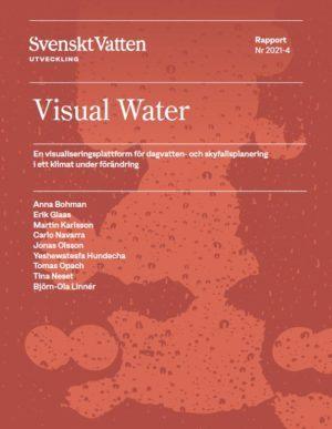 Visual water